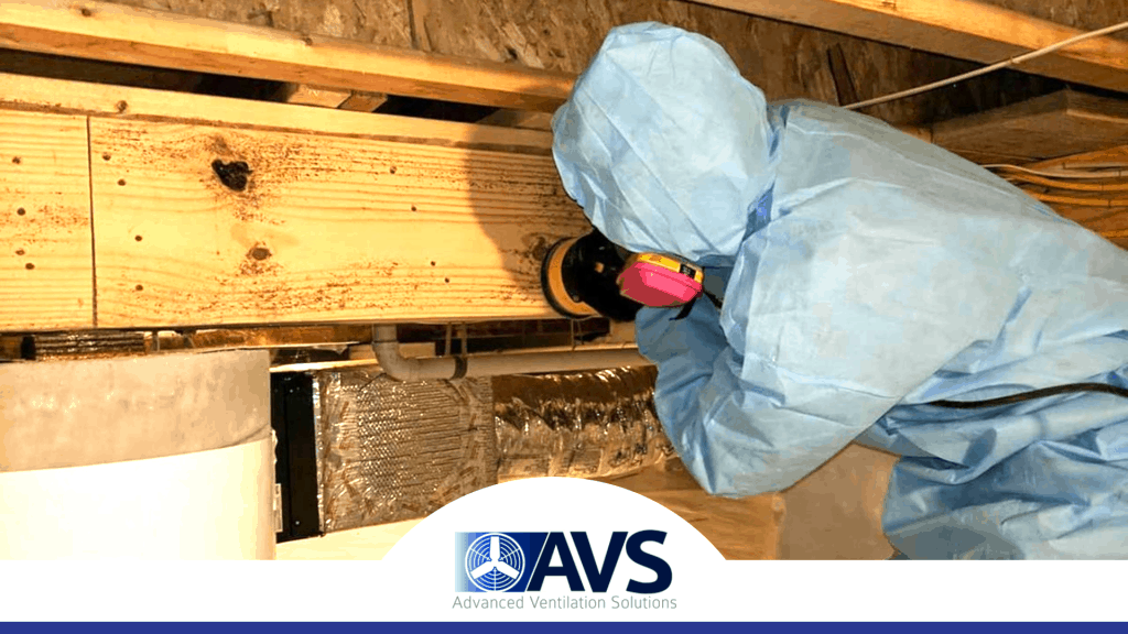 Crawl Space Mold Removal in Mooresville, NC, 28115, Iredell County (856)